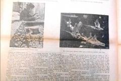 Jihoameričan_1943_103